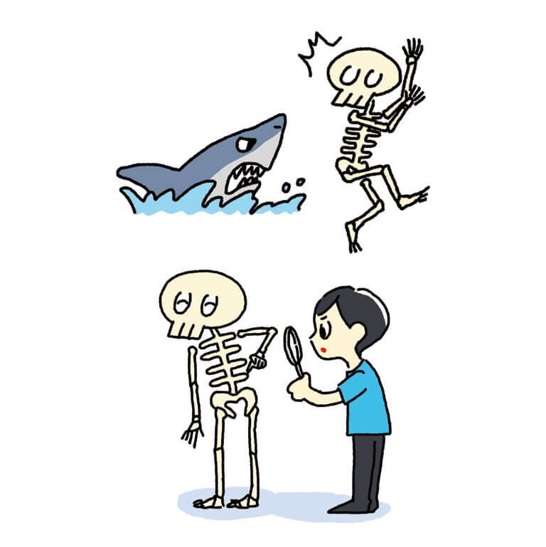 骨と関節のしくみ・はたらきゆるっと事典